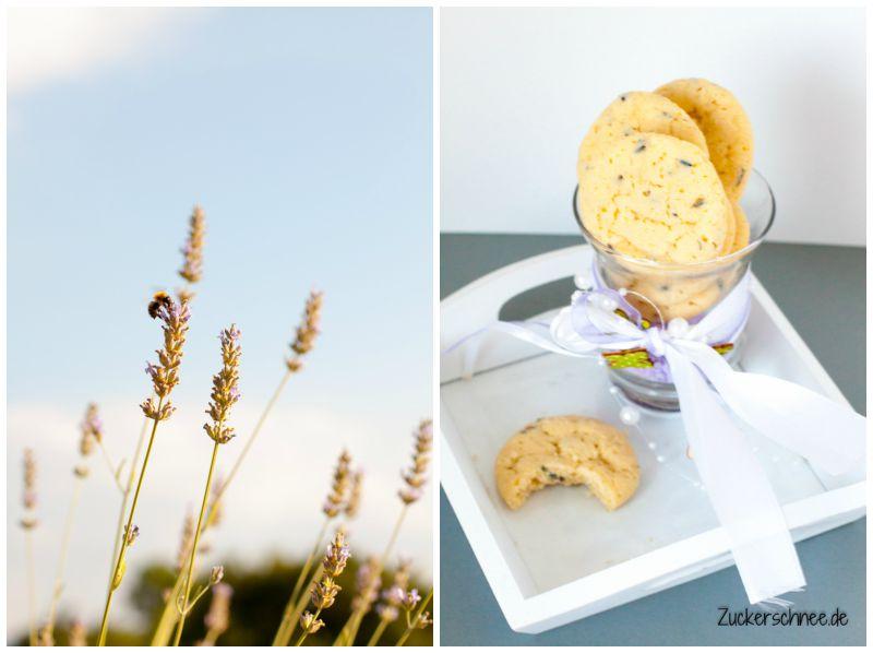 Lavendel_Collage
